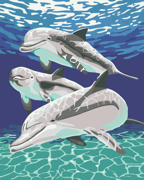 Dream Dolphin Diy Paint By Numbers Kits WM-520