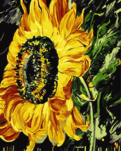 Sunflower Diy Paint By Numbers Kits WM-572