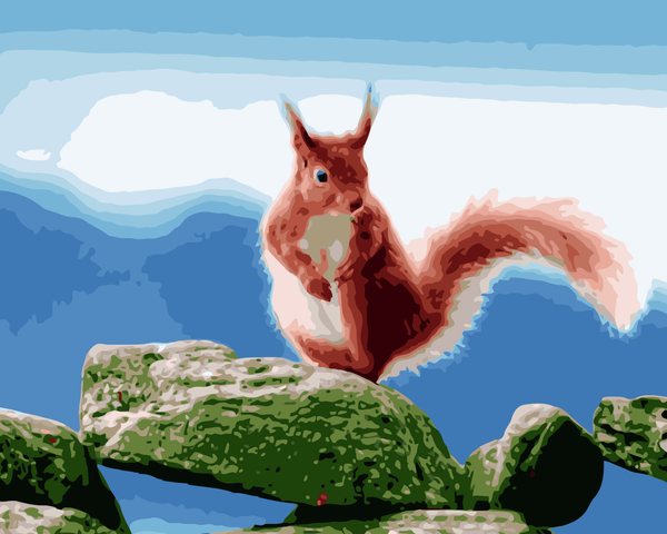 Squirrel Diy Paint By Numbers Kits WM-690