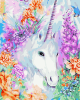 Unicorn Diy Paint By Numbers Kits WM-727
