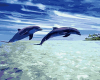 Dream Dolphin Diy Paint By Numbers Kits WM-942