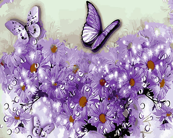 Butterfly Diy Paint By Numbers Kits WM-952