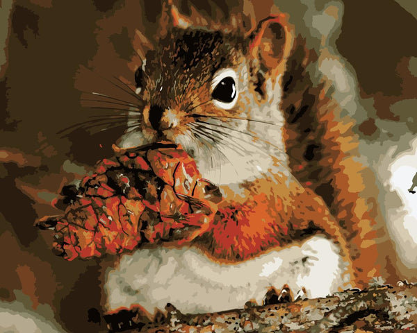 Squirrel Diy Paint By Numbers Kits WM-967
