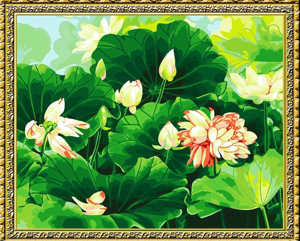 Lotus Diy Paint By Numbers Kits YM-4050-088