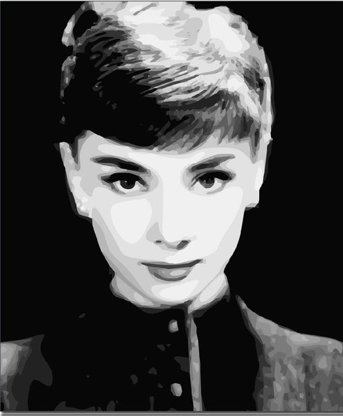 Audrey Hepburn Diy Paint By Numbers Kits YM-4050-111