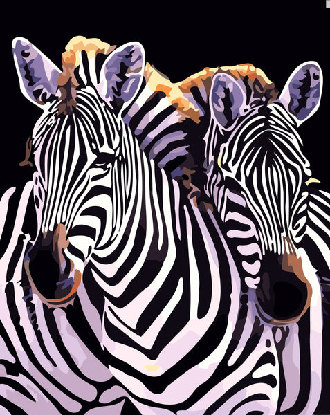 Zebra Diy Paint By Numbers Kits YM-4050-182