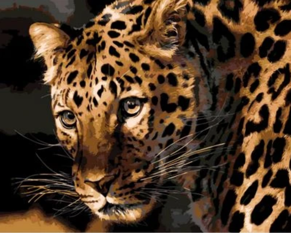 Animal Leopard Diy Paint By Numbers Kits ZXQ694