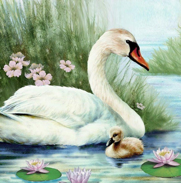 Swan Paint By Numbers Kits PBN90678