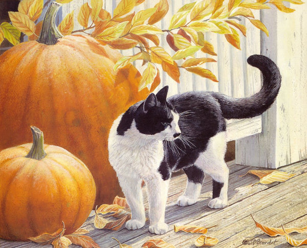 Lovely Cat Diy Paint By Numbers Kits PBN91160