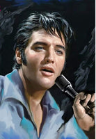 Music star Elvis Presley Diy Paint By Numbers Kits VM92817