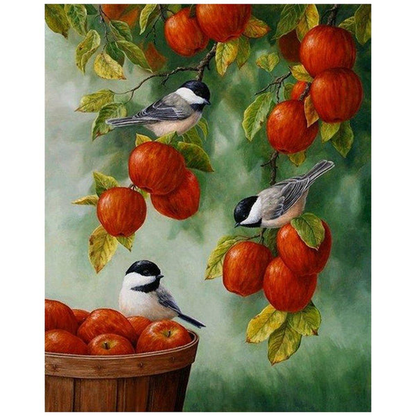 Bird Diy Paint By Numbers Kits VM95881