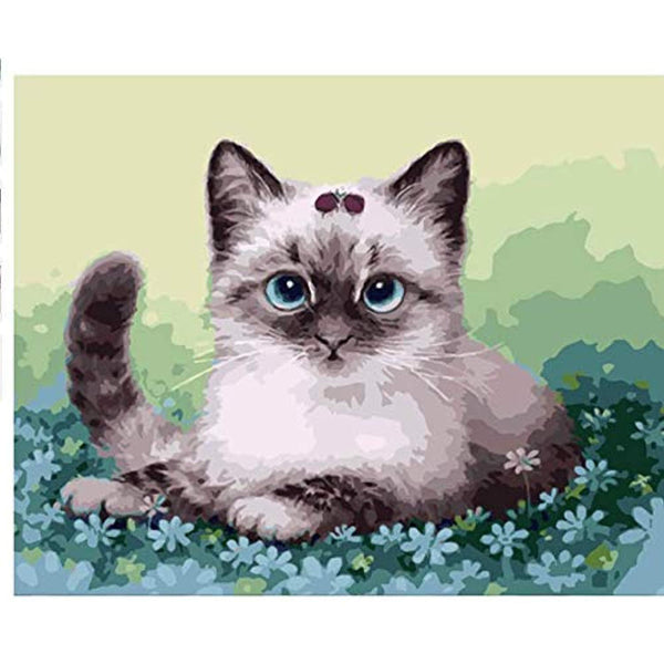 Cat Diy Paint By Numbers Kits VM96363