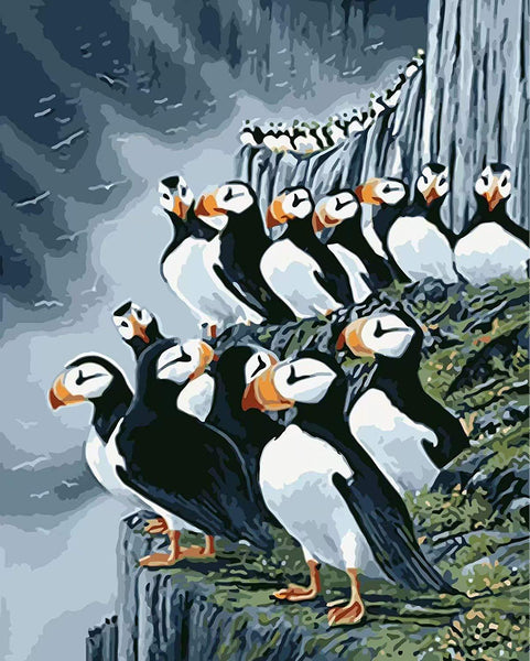 Penguin Diy Paint by Numbers Kits DIY PBN96424
