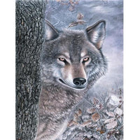 Animal Wolf Diy Paint By Numbers Kits PBN91740