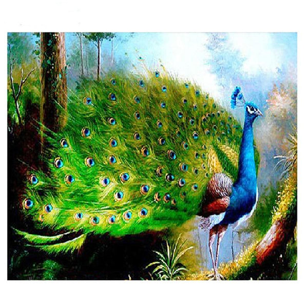 Peacock Diy Paint By Numbers Kits PBN30020