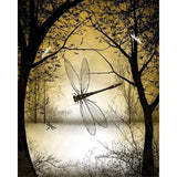 Dragonfly  Diy Paint By Numbers Kits VM30240