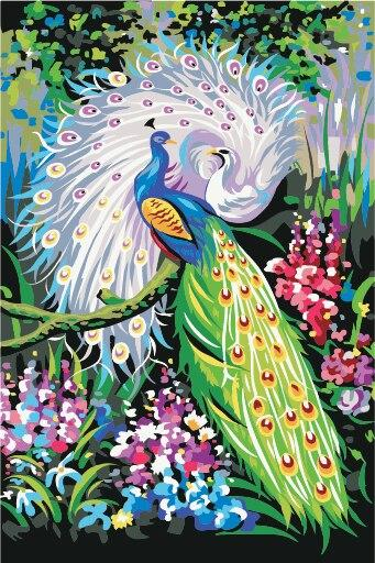 Peacock Diy Paint By Numbers Kits PBN30023