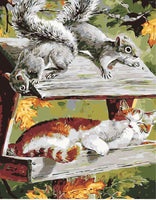 Squirrel Diy Paint by Numbers Kits DIY PBN30105