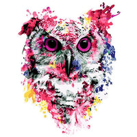 Colorful Owl Diy Paint By Numbers Kits VM91205