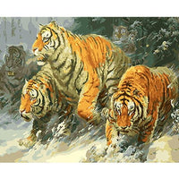 Tiger Diy Paint By Numbers Kits PBN97279