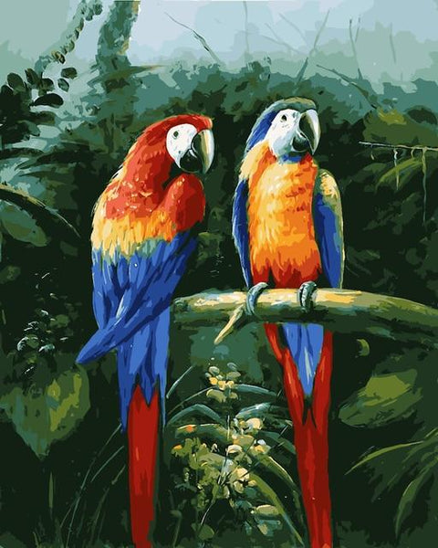 Animal Parrot  Paint By Numbers Kits VM90741