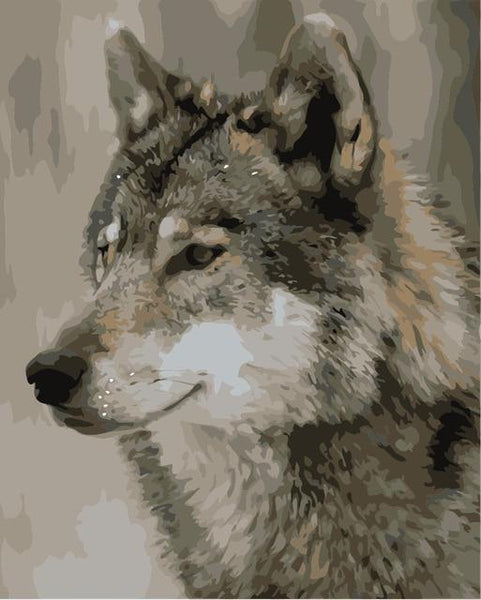 Animal Wolf Paint By Numbers Kits VM90740