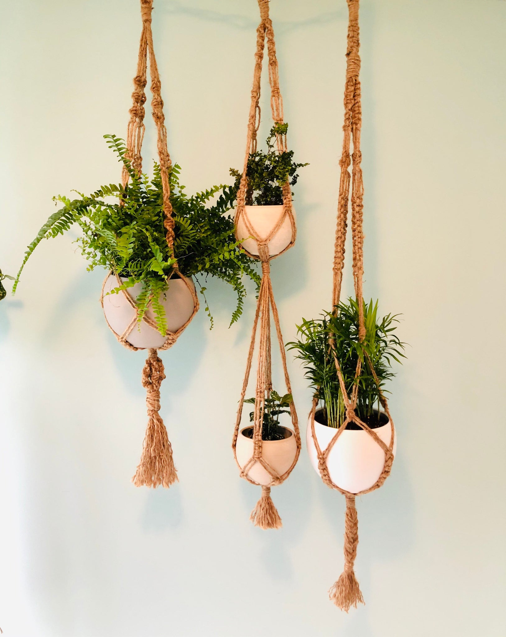 Set Of 3 Large Jute Macrame Plant Hangers 58 46 And Double 48 Knotted Crafts Canada