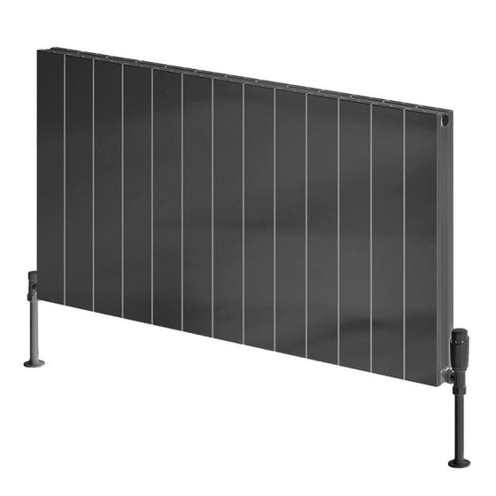 Reina Casina Single Horizontal Aluminium Radiator 600 x 1230 - Anthracite - welovecouk