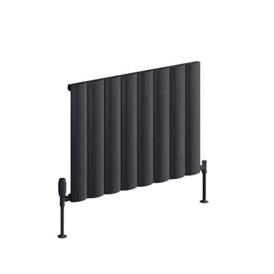 Reina Belva Single Horizontal Aluminium Radiator 600 x 828 - Anthracite - welovecouk