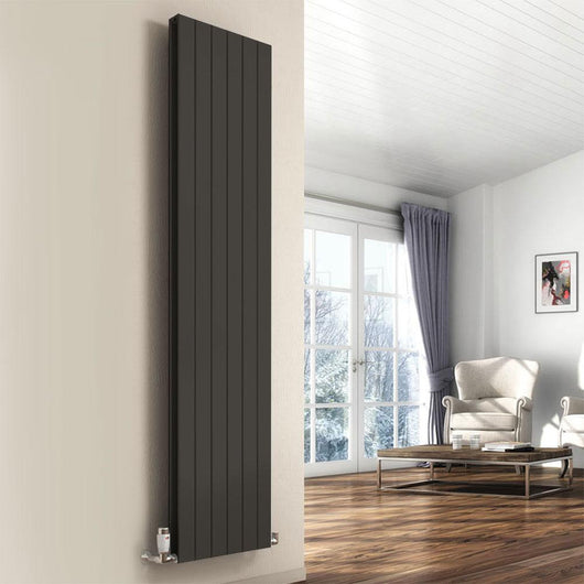 Reina Flat Vertical Mild Steel Double Column Radiator 1600 x 440 - Anthracite - welovecouk