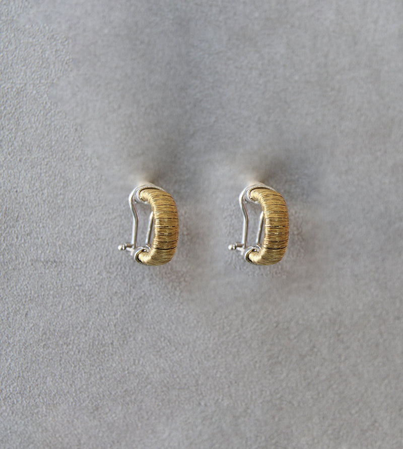 Silver 925 Earrings