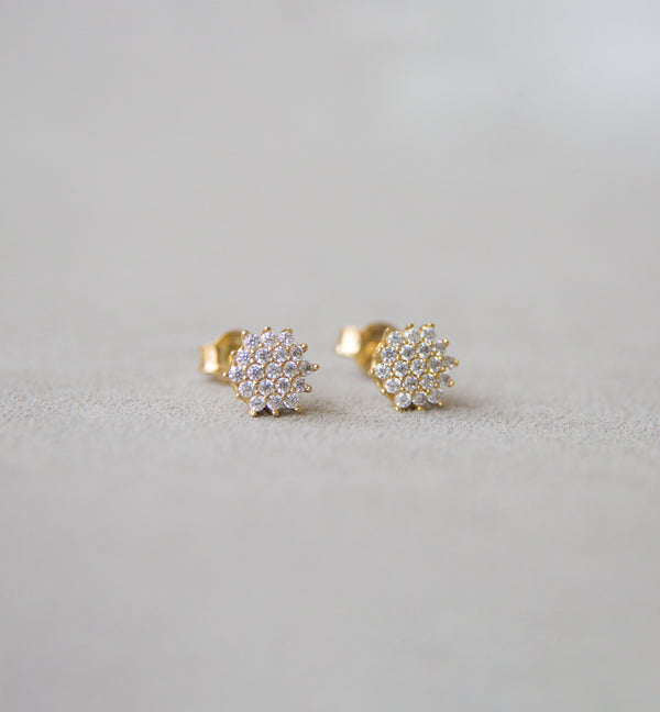 18ct Yellow Gold Earrings