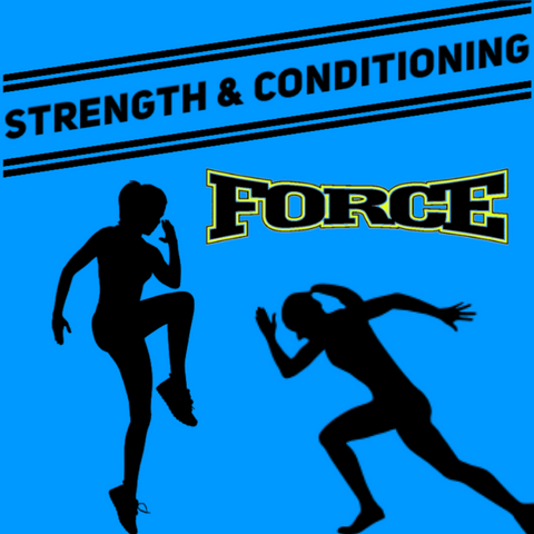 Strength and Conditioning Program