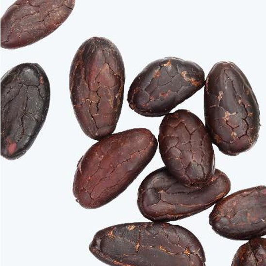ing-cacao-seeds