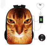 Chat Cartable
