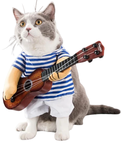 Costume Chat Guitare