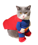costume superman chat