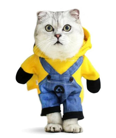 Costume Minion pour Chat