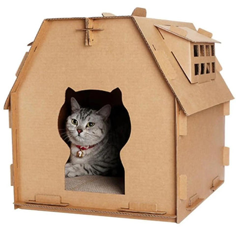 Maison Chat Griffoir