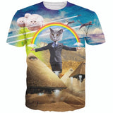 Tee shirt arc en ciel chat