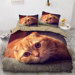 Housse de Couette Chat Scottish Fold