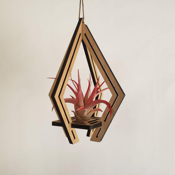 Temple Air Plant Holder