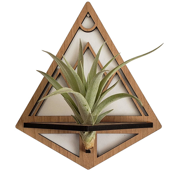 Mountains Air Plant Holders