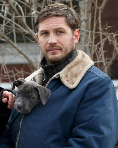 Top 10 Male Celebs Who Own Pibbles