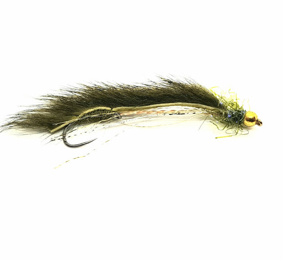 Barbless Olive Squirrel Snake CODE BS12