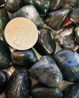 In addition to the generic healing properties of Agate and Chalcedony, Moss Agate is a stone of new beginnings. Refreshes the soul and enables you to see beauty in all you behold. Moss Agate reduces sensitivity to weather and environmental pollutants. It attracts abundance in wealth and improves self-esteem.