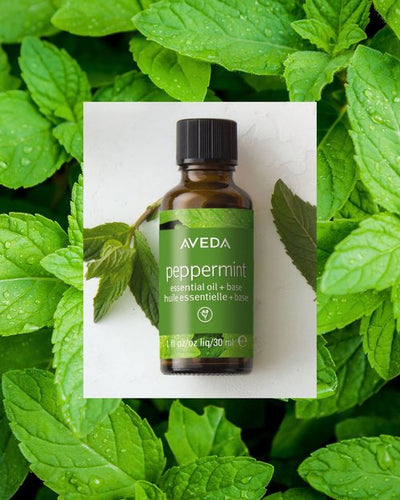 peppermint essential oil + base