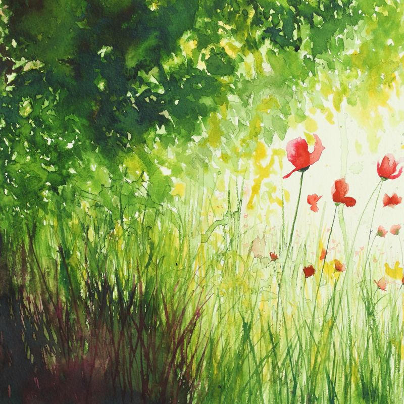 'Summer Poppies' Original Watercolour Mixed Media Painting