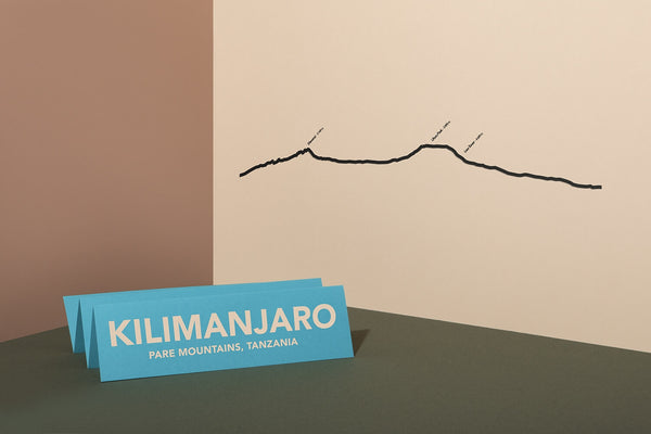 Kilimanjaro Summit Wall Art