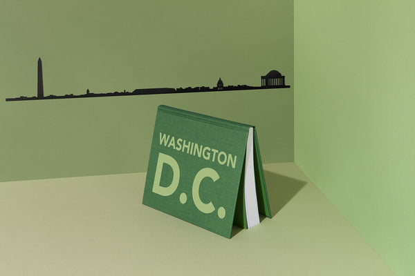 Washington DC Skyline Wall Art